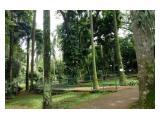 Disewakan: Rumah apik berlokasi sangat strategis depan taman Langsat - Barito